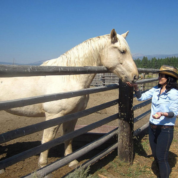 All the Pretty Horses- Horseback riding in Island Park, Idaho