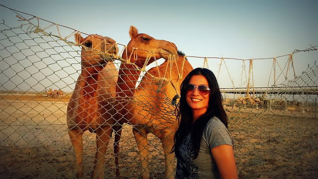Watching Camels Kiss- And Other Awesome Things to Do in the Desert