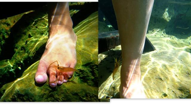 Underwater cam4