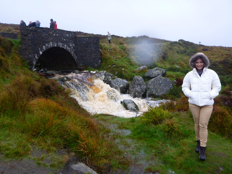 Bridge where the movie PS I Love You was shot. Wild Wicklow Tours