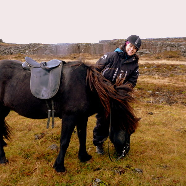 Horseback Riding in Iceland: The Horses Make All the Difference