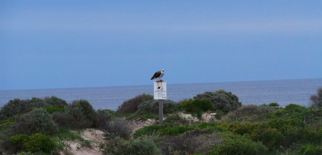 The West End of Rottnest Island