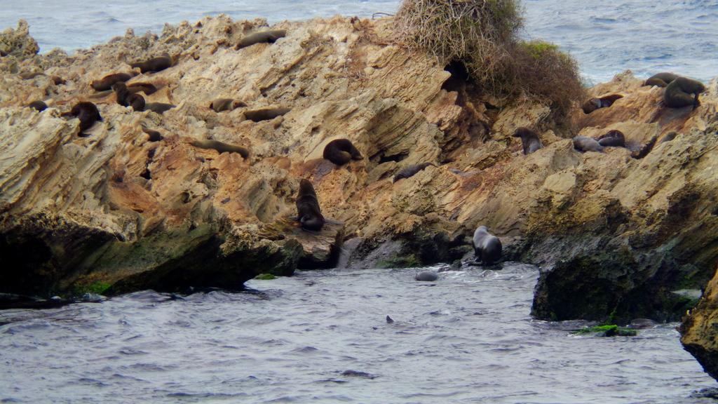 Cathedral Rocks at Rottnest Island