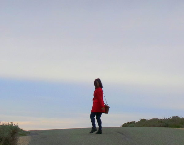 Exploring Rottnest Island: The Wild (life) Side of Western Australia