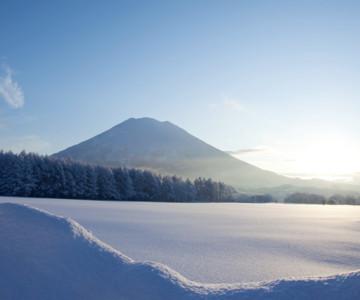 Skiing in Niseko Japan