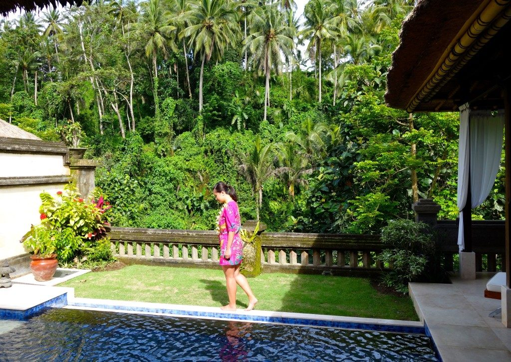 Pool & Garden overlooking the valley - Vice Regal II Viceroy Bali