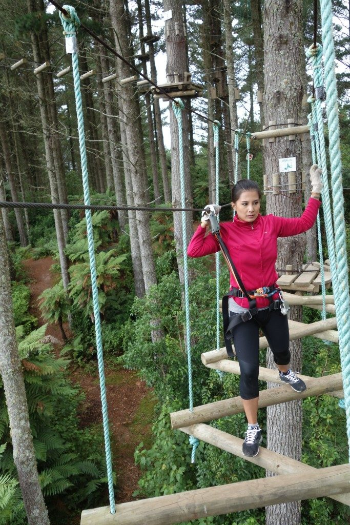 amazing high-ropes course in Bay of Plenty. Adrenalin Forest