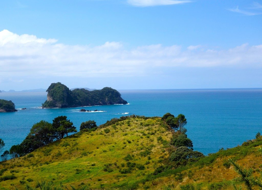 the view from the walk to Cathedral Cove