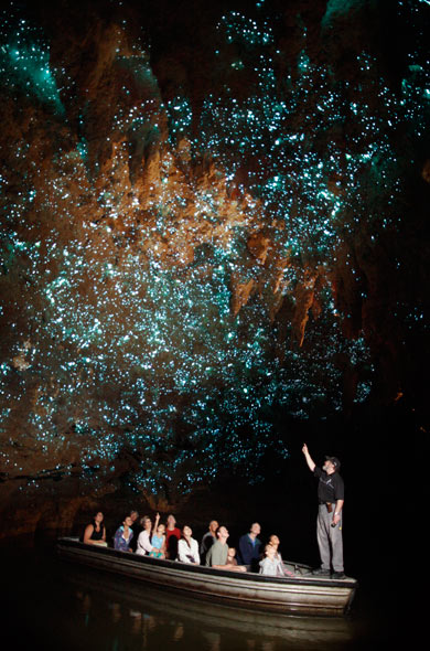 Waitimo Glow Worm Caves New Zealand. Photo from Waitomo Caves