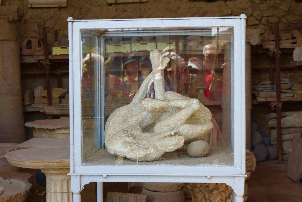 A mummified dog in Pompeii