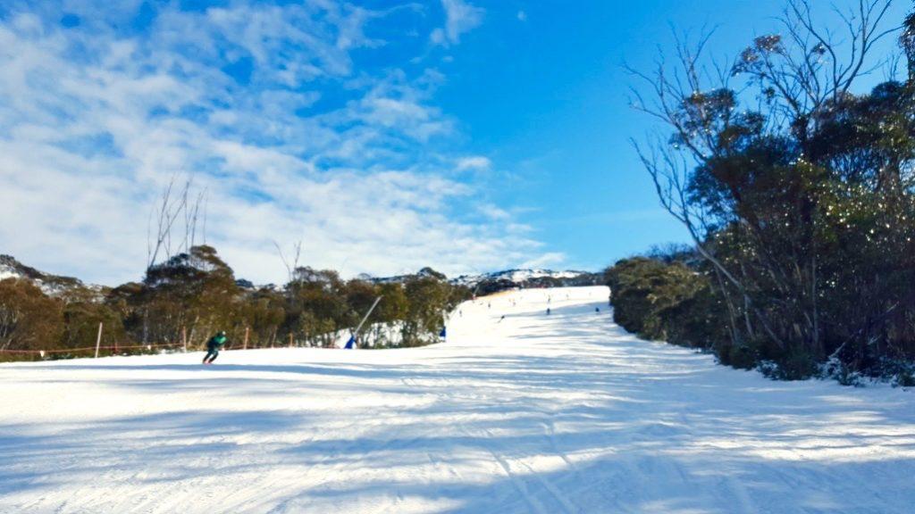 skiing in Thredbo