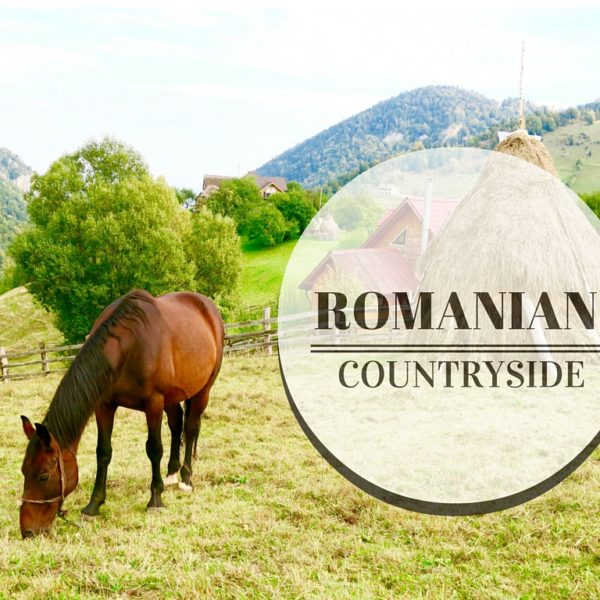 A Unique Experience in the Romanian Countryside