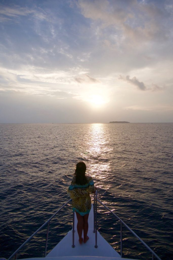 Sunset / Dolphin Cruise