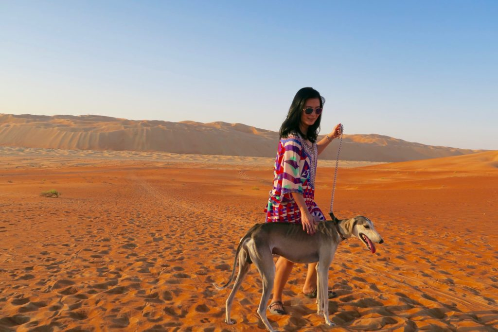 My first time to see and handle a Saluki. Qasr al Sarab by Anantara