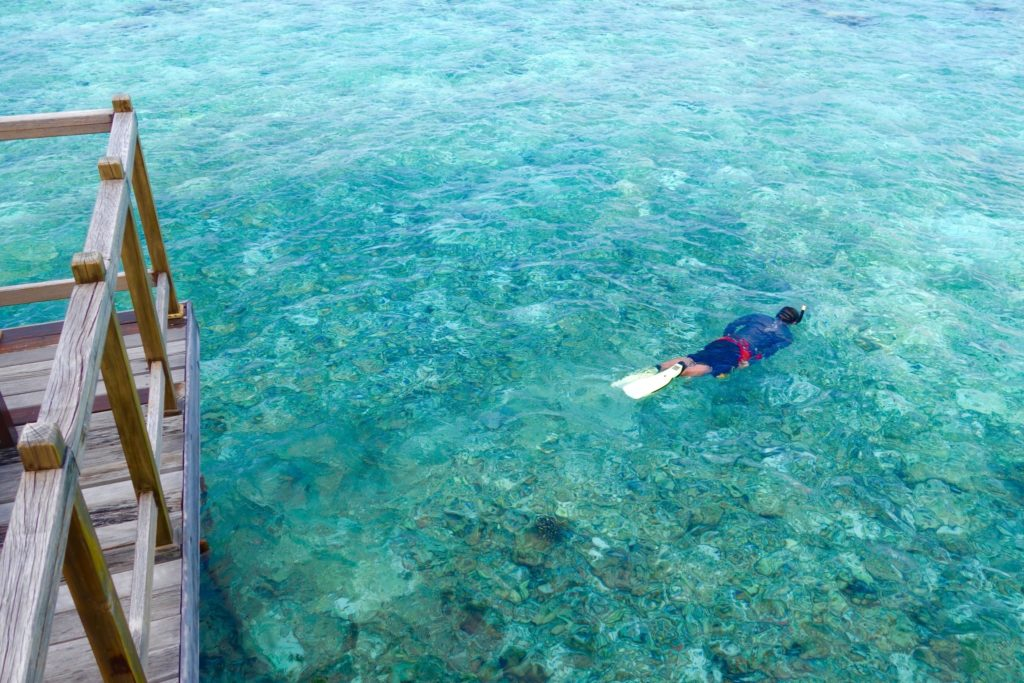 Zombie snorkelling away. Water Villa with Pool at Jumeirah Vittaveli