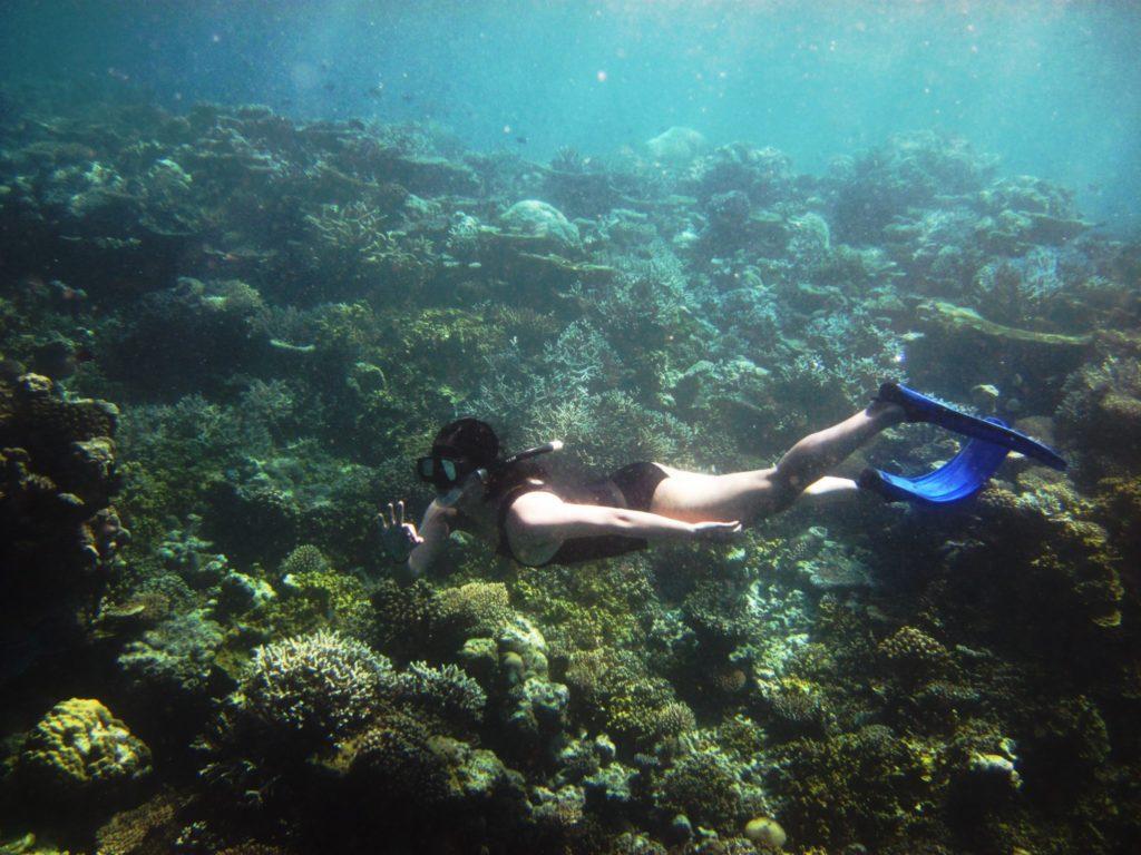 Jumeirah Vittaveli Snorkelling Tour