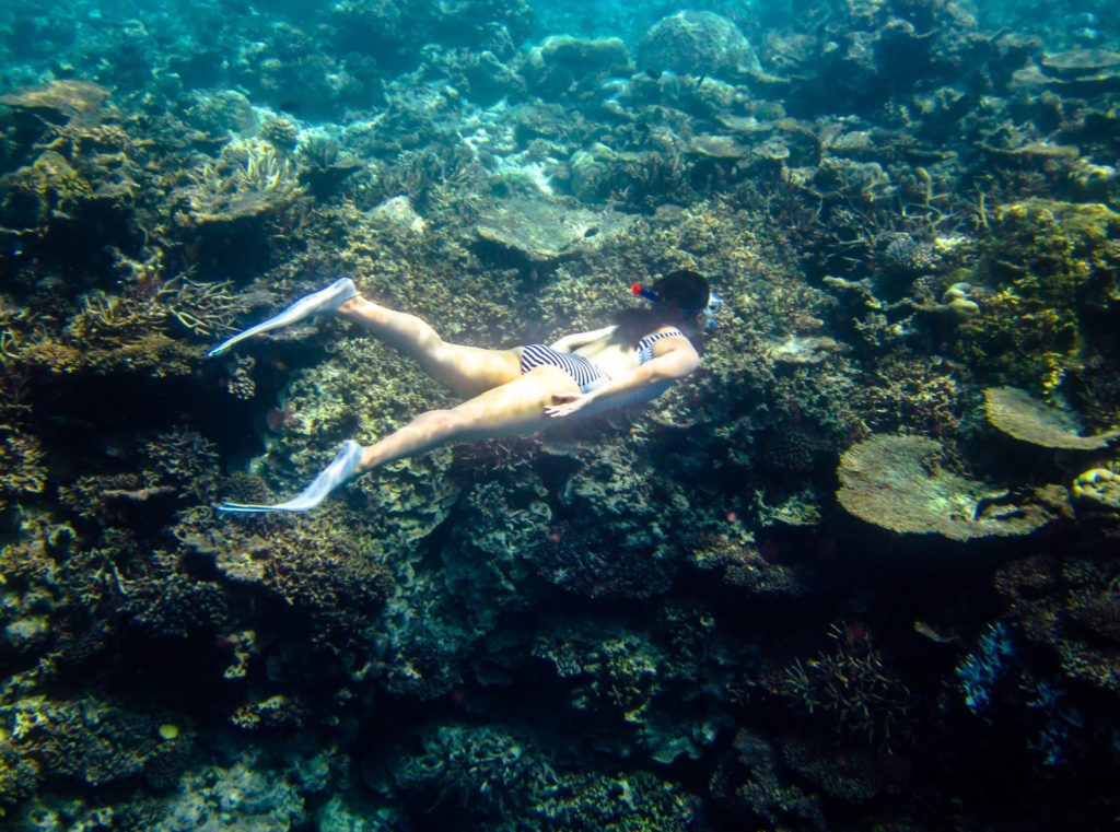 snorkelling in Anantara Veli's reef