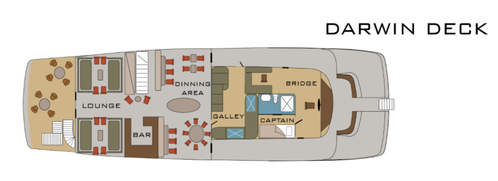Darwin Deck of MV Origin