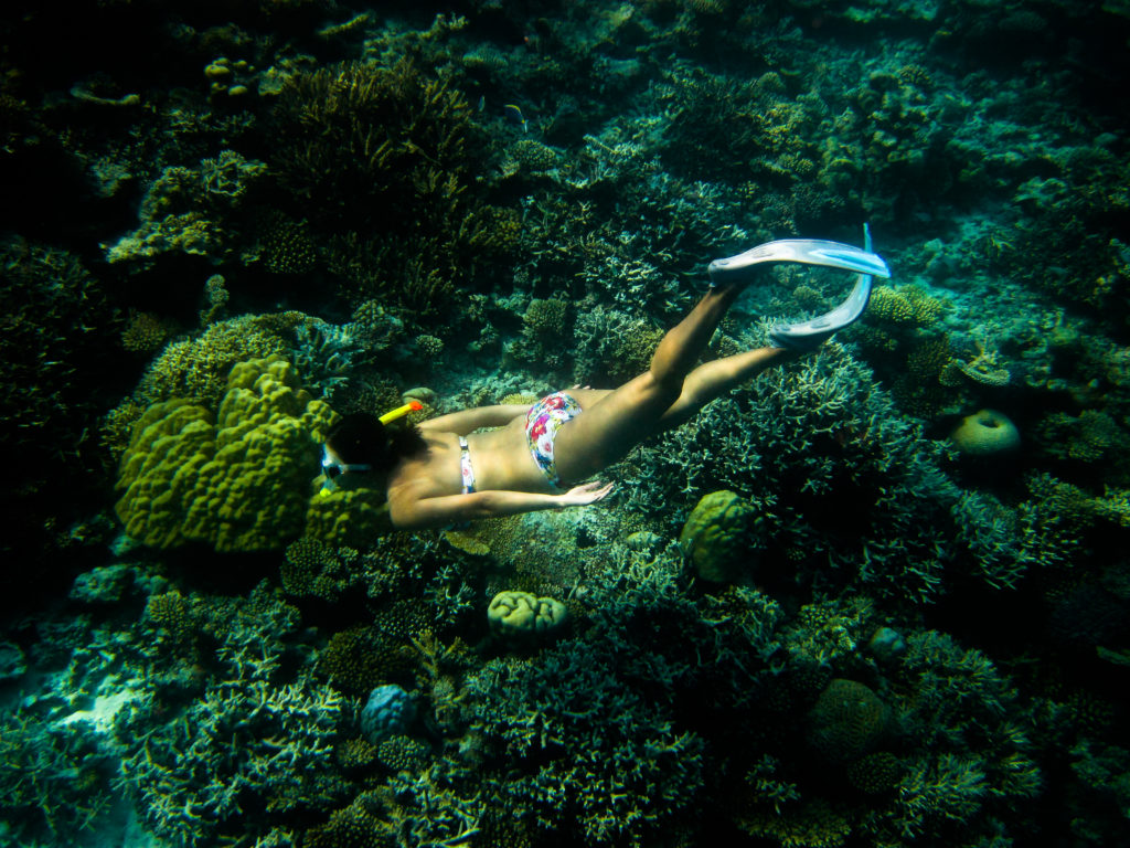 Underwater in the Maldives wearing JETS bikini