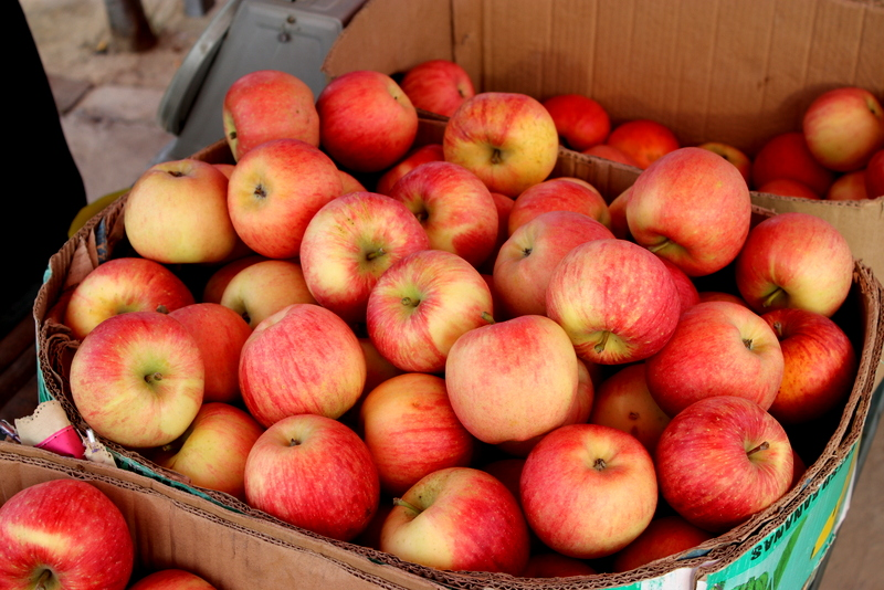 Yan'an apples are sweet, crisp and juicy!