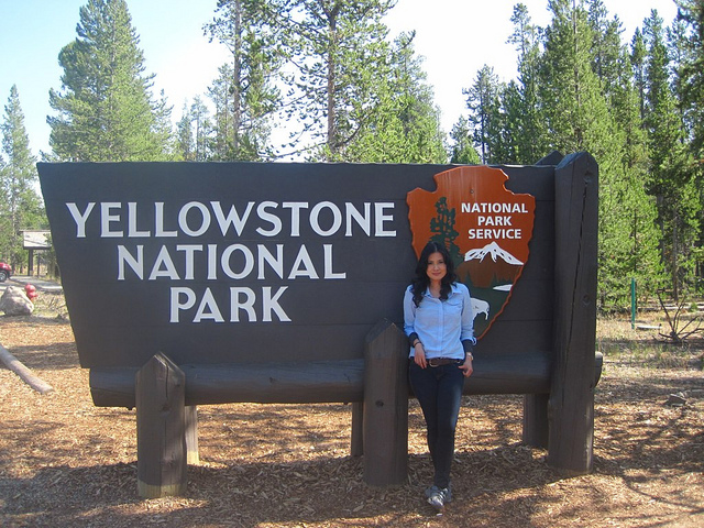 Yellow there, Yellowstone!