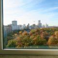 View of Tiergarten from the 10th floor Executive Room, InterContinental Berlin