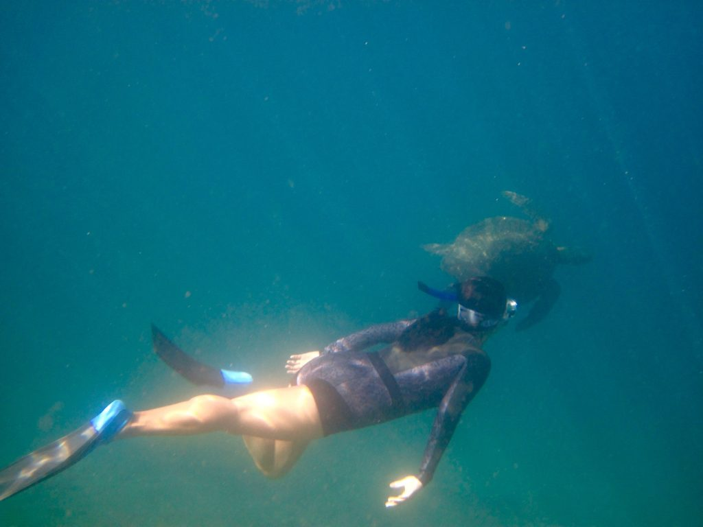Wet Suit in the Galapagos