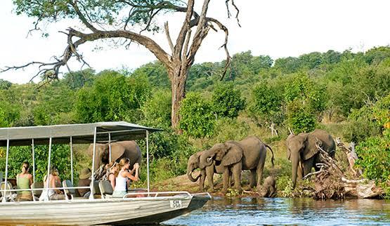 Top 5 Luxury Safaris Destinations